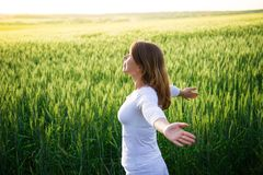Girl in field at summer Royalty Free Stock Photography