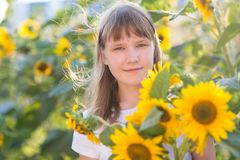 Girl in the field of sunflowers. The girl in the field of sunflowers royalty free stock photo