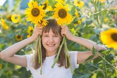 Girl in the field of sunflowers. The girl in the field of sunflowers stock photography