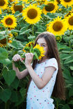 Girl on the field of sunflowers Stock Image