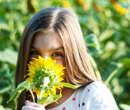 Girl on the field of sunflowers Stock Photos