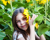 Girl on the field of sunflowers Stock Images