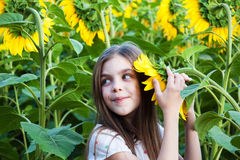 Girl on the field of sunflowers Stock Photography