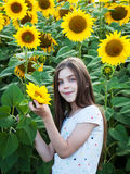 Girl on the field of sunflowers royalty free stock image