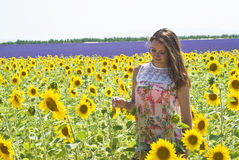 Girl in field sunflowers Royalty Free Stock Photo