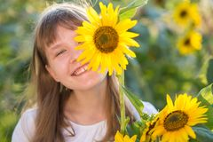 Girl in the field of sunflowers. The girl in the field of sunflowers stock images