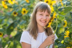 Girl in the field of sunflowers. The girl in the field of sunflowers stock photos