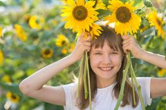 Girl in the field of sunflowers. The girl in the field of sunflowers stock photo