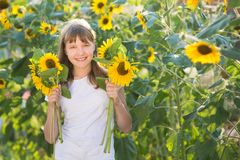 Girl in the field of sunflowers. The girl in the field of sunflowers royalty free stock photos
