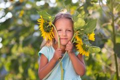 The girl in the field of sunflowers. Girl in the field of sunflowers royalty free stock image