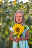 The girl in the field of sunflowers. Girl in the field of sunflowers stock photography