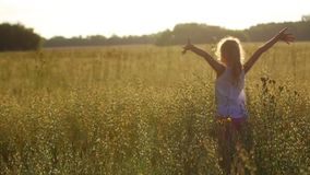 Girl in the field at sunset stock video