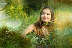 Girl in a field of tall grasses Stock Photos