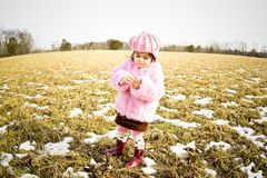 Girl in a field4 Stock Image