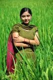 Girl in fields. Beautiful shot of smiling indian punjabi girl in green field Stock Photos