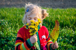 Girl and fields Stock Photography