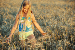 The girl in filed wheats. Royalty Free Stock Photo