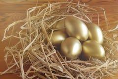 girl financiero lleva a cabo un paquete de placer de los dólares Huevo de oro en fondo de madera fotos de archivo libres de regalías