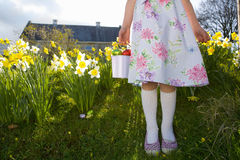 Girl finding chocolate Easter eggs in flowers Stock Photos