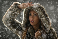 Girl Finding Her Way Through Blizzard Royalty Free Stock Photography