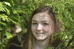 Girl in the fir forest. Girl in the spring fir forest Stock Image