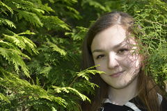Girl in the fir forest. Girl in the spring fir forest Royalty Free Stock Photography