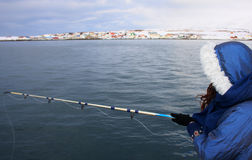 Girl fishing iceland. Girl or woman fishing in greenland sea, wearing parka, in winter in iceland, scandinavia Stock Photos