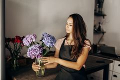 Girl florist in a black apron looks at vase with blue and lilac hydrangea stock photo