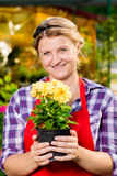 Girl florist grows in the greenhouse. Favorite flowers Royalty Free Stock Photos