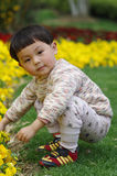 Girl and flower. Chinese girl play in a garden Stock Photos