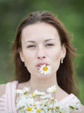 Girl with flower of chamomile in teeth looking at camera Royalty Free Stock Images