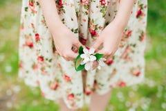 Girl in flower dress holding sakura cherry blossom in hands Stock Image