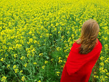 Girl in flower field Stock Images