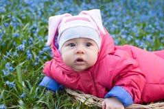 Girl in a flower field Stock Image