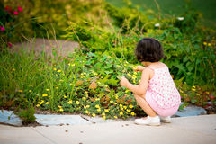 Girl in flower garden Royalty Free Stock Image