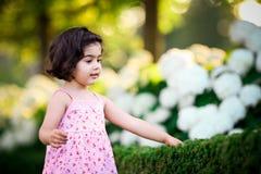 Girl in flower garden stock images