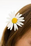 Girl with flower in her hair. Royalty Free Stock Photography