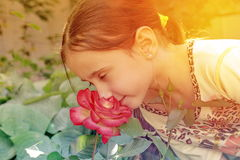 Girl and flower. The girl inhales the aroma of a summer flower Royalty Free Stock Photography