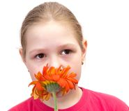 The girl with a flower isolated Royalty Free Stock Image