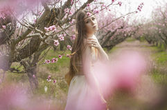 The girl in the flowered garden. Spring girl in a gold dress in peach garden Royalty Free Stock Image