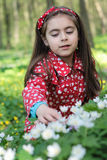 Girl in flowers. Little girl sitting in a flowers in the woods Royalty Free Stock Photography