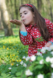 Girl in flowers. Little girl sitting in a flowers in the woods Stock Photos