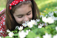 Girl in flowers. Little girl sitting in a flowers in the woods Royalty Free Stock Images
