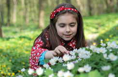 Girl in flowers. Little girl sitting in a flowers in the woods Stock Images