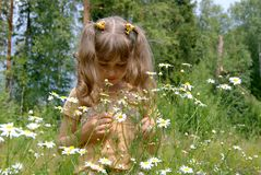 The girl with flowers Stock Images