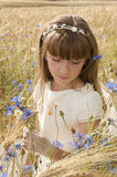 Girl among flowers Stock Image