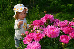 Girl and flowers. Small pretty girl  and beauty red flowers Stock Photo