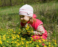 Girl in flowers. Little girl in the flowers Royalty Free Stock Photography