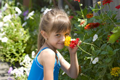 The girl with flowers. The girl smells flowers on a flower-bed Stock Image