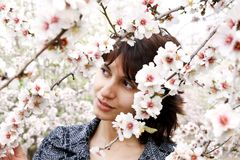 Girl among the flowers of almond Stock Image